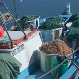 cyprus-fishing-activities