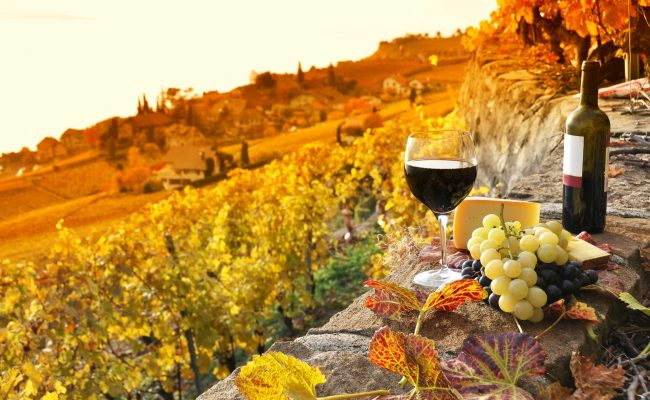 nemea_winetasting_events-650x400