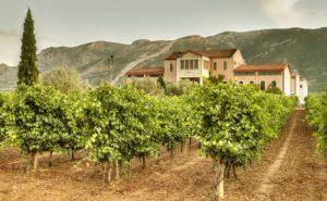 skouras-winery-nemea-650x400