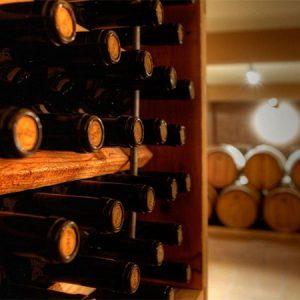 wine-culinary