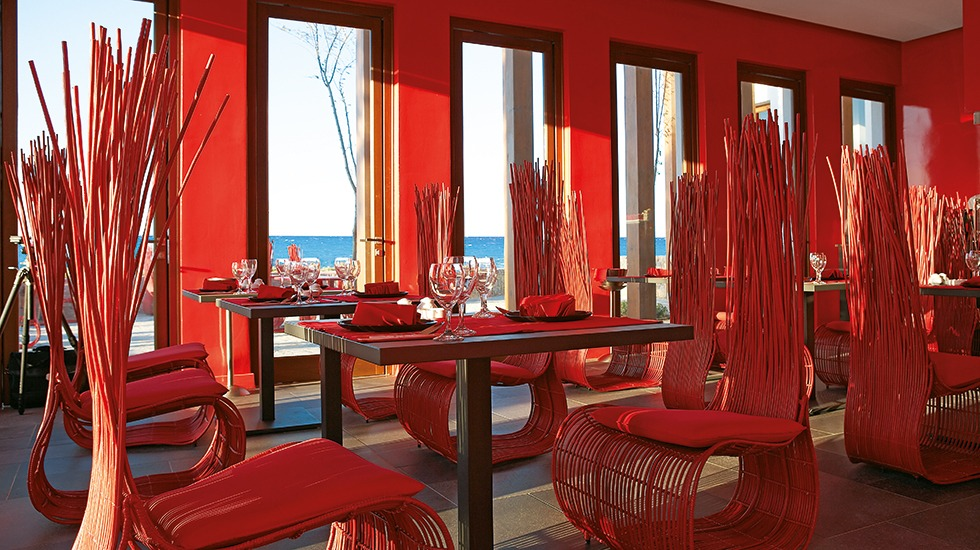 amirandes_blue_monkey_asian_restaurant