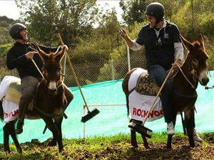 donkey-polo-csr-activity