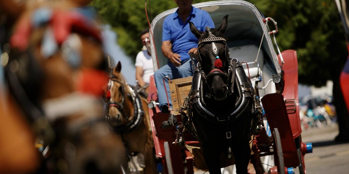 aegina_horse_carriages