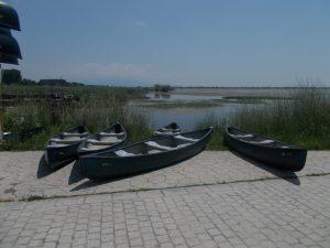 canoe-teambuilding-event