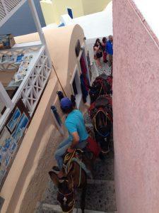 santorini-donkey-ride